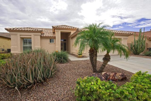 4063 N 160TH Drive, Goodyear, AZ 85395 (MLS #5647139) :: Desert Home Premier