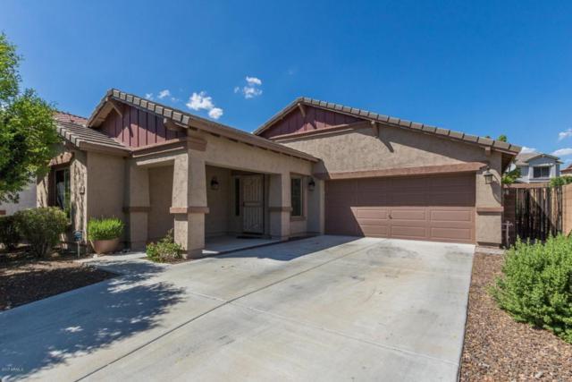 12854 W Milton Drive, Peoria, AZ 85383 (MLS #5647143) :: The Laughton Team