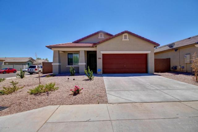 11741 W Chase Lane, Avondale, AZ 85323 (MLS #5647221) :: Essential Properties, Inc.