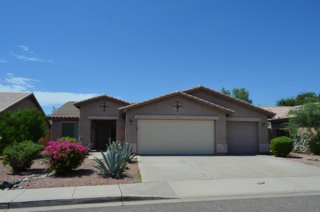 14815 W Maui Lane, Surprise, AZ 85379 (MLS #5647345) :: The Jesse Herfel Real Estate Group