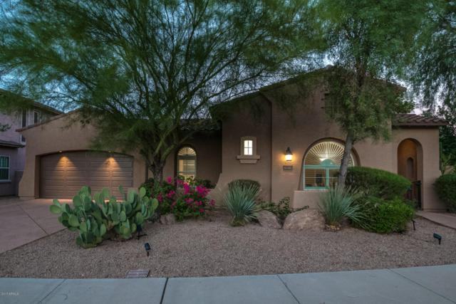 25919 N 84th Drive, Peoria, AZ 85383 (MLS #5647367) :: The Laughton Team