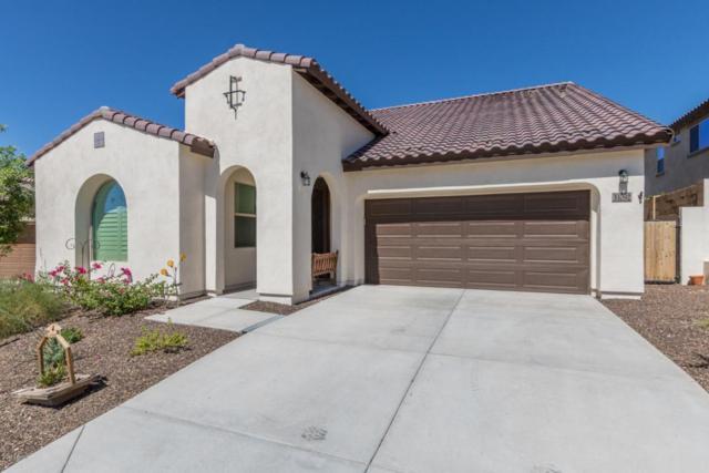 31092 N 138TH Avenue, Peoria, AZ 85383 (MLS #5647384) :: The Laughton Team