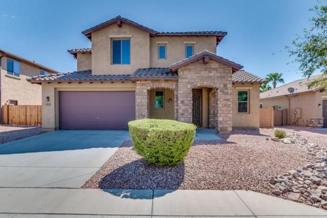 23317 N 123RD Drive, Sun City West, AZ 85375 (MLS #5647511) :: Kelly Cook Real Estate Group