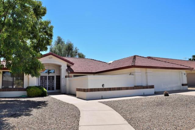 14431 W Summerstar Drive, Sun City West, AZ 85375 (MLS #5647519) :: Kelly Cook Real Estate Group