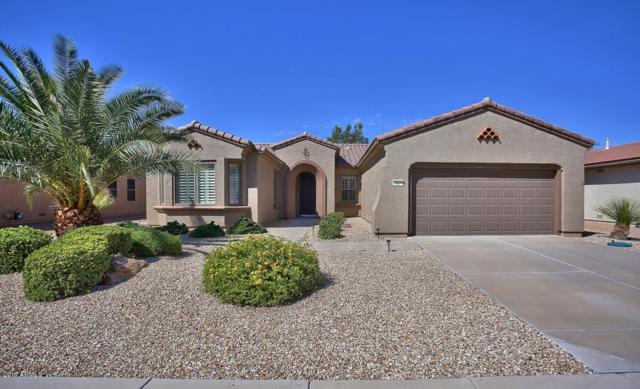 16571 W Stock Trail, Surprise, AZ 85387 (MLS #5647589) :: Desert Home Premier