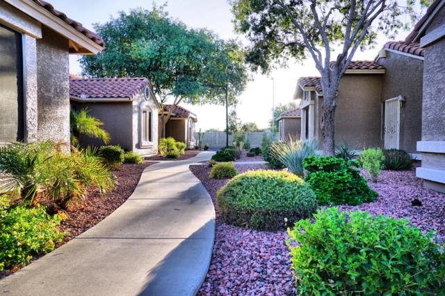 7040 W Olive Avenue #78, Peoria, AZ 85345 (MLS #5647603) :: Kelly Cook Real Estate Group