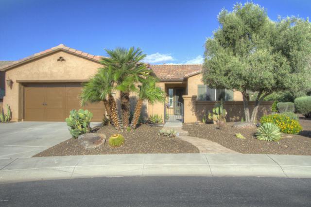 27058 N 130TH Lane, Peoria, AZ 85383 (MLS #5647626) :: The Laughton Team