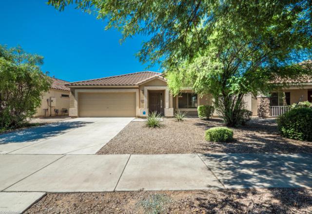 22309 E Via Del Rancho, Queen Creek, AZ 85142 (MLS #5647628) :: Kelly Cook Real Estate Group