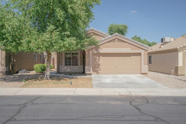 14717 N 125TH Avenue, El Mirage, AZ 85335 (MLS #5647672) :: Kelly Cook Real Estate Group