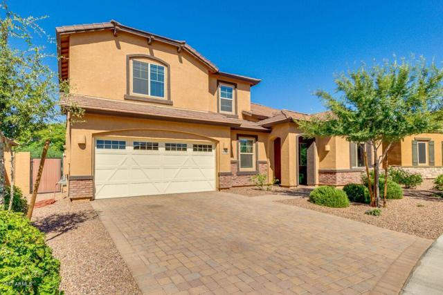 19711 S 192ND Place, Queen Creek, AZ 85142 (MLS #5647687) :: Kelly Cook Real Estate Group