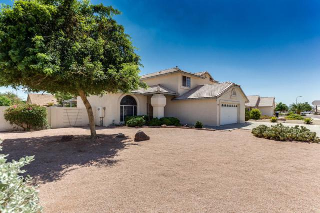 8729 W Columbine Drive, Peoria, AZ 85381 (MLS #5647719) :: Essential Properties, Inc.