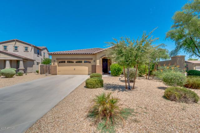 4355 N 156TH Drive, Goodyear, AZ 85395 (MLS #5647722) :: Essential Properties, Inc.