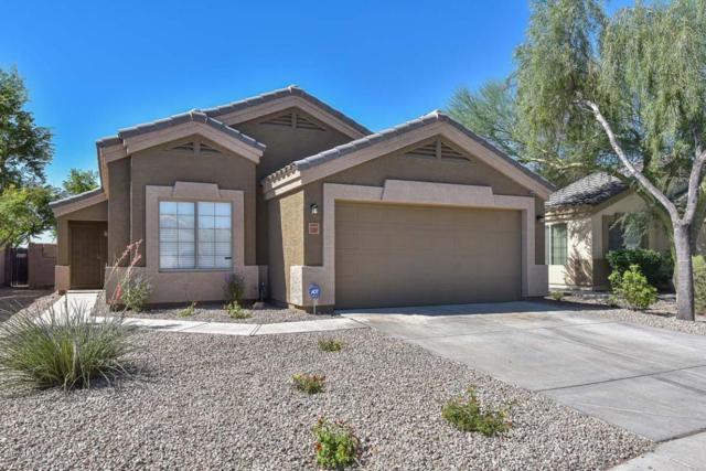 12801 W Mandalay Lane, El Mirage, AZ 85335 (MLS #5647804) :: Kelly Cook Real Estate Group