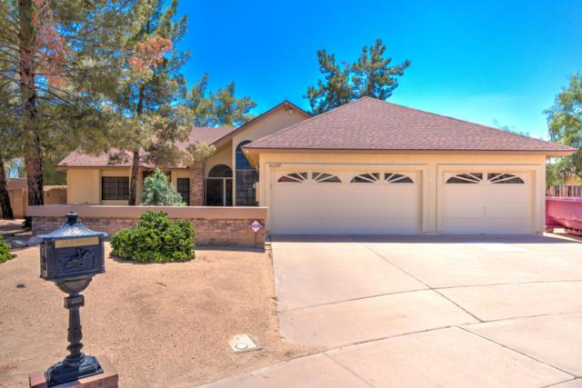 4077 W Victoria Lane, Chandler, AZ 85226 (MLS #5647826) :: Kelly Cook Real Estate Group