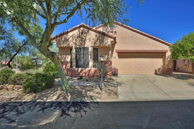 15513 W Coral Pointe Drive, Surprise, AZ 85374 (MLS #5647831) :: Desert Home Premier