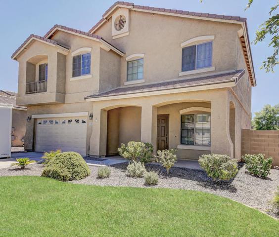 2837 E Baars Court, Gilbert, AZ 85297 (MLS #5647857) :: Kelly Cook Real Estate Group