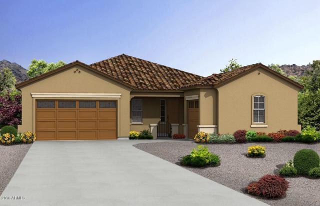20872 E Camina Buena Vista, Queen Creek, AZ 85142 (MLS #5647907) :: Kelly Cook Real Estate Group