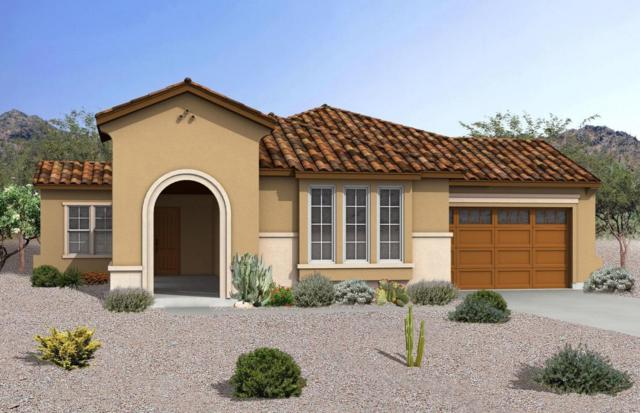 20873 E Arroyo Verde Drive, Queen Creek, AZ 85142 (MLS #5647914) :: Kelly Cook Real Estate Group