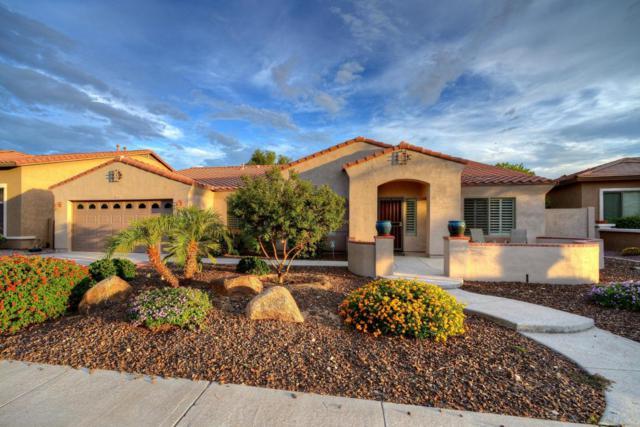 18237 W Woodrow Lane, Surprise, AZ 85388 (MLS #5647918) :: Essential Properties, Inc.