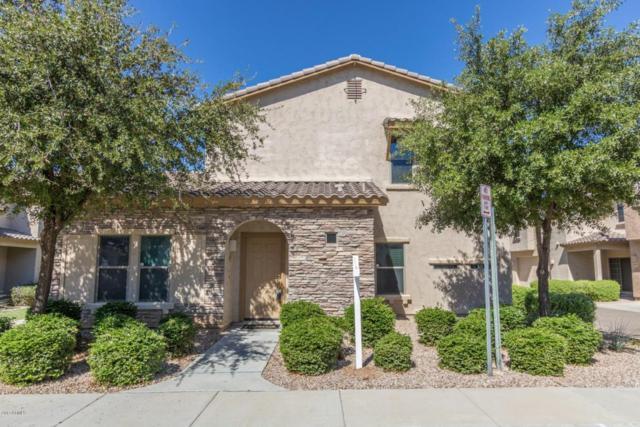 14912 N 177TH Avenue, Surprise, AZ 85388 (MLS #5647944) :: Essential Properties, Inc.
