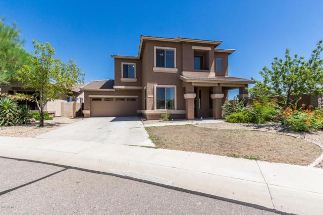 16205 N 180TH Drive, Surprise, AZ 85388 (MLS #5648004) :: Essential Properties, Inc.
