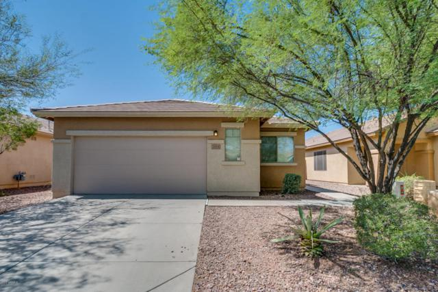 1819 W Owens Way, Anthem, AZ 85086 (MLS #5648047) :: Desert Home Premier