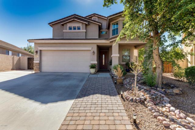 22201 N 102ND Lane, Peoria, AZ 85383 (MLS #5648086) :: Essential Properties, Inc.