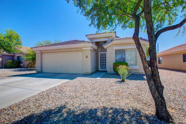 4505 N 123RD Drive, Avondale, AZ 85392 (MLS #5648089) :: Essential Properties, Inc.