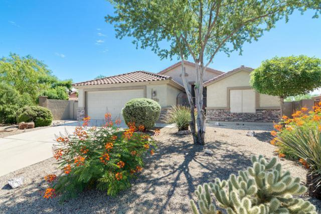 6835 E Las Animas Trail, Gold Canyon, AZ 85118 (MLS #5648145) :: The Bill and Cindy Flowers Team