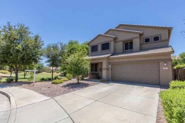 15319 W Mauna Loa Lane, Surprise, AZ 85379 (MLS #5648264) :: The Everest Team at My Home Group