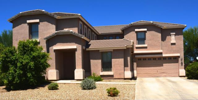 14196 W Woodbridge Avenue W, Goodyear, AZ 85395 (MLS #5648270) :: Desert Home Premier