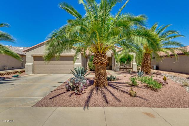 16512 W La Posada Lane, Surprise, AZ 85374 (MLS #5648340) :: Desert Home Premier