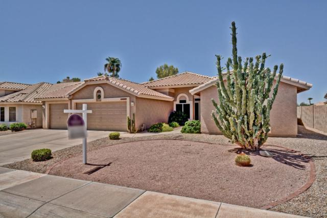 18906 N 88TH Drive, Peoria, AZ 85382 (MLS #5648379) :: Desert Home Premier