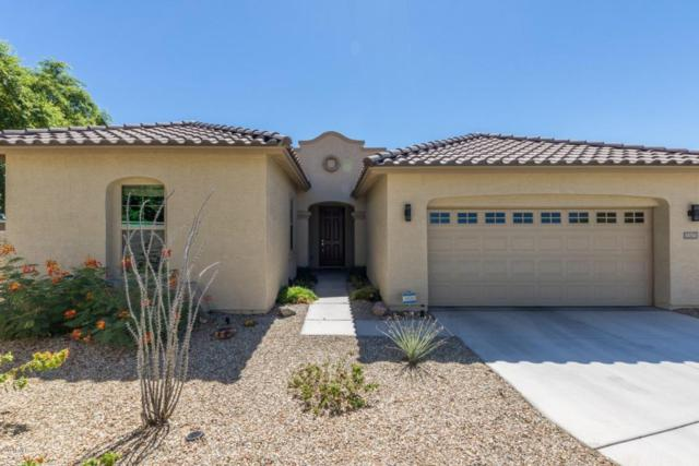 13752 S 177TH Avenue, Goodyear, AZ 85338 (MLS #5648415) :: Desert Home Premier
