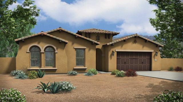 9222 W Louise Drive, Peoria, AZ 85383 (MLS #5648435) :: The Laughton Team