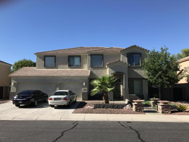 13026 W Segovia Drive, Litchfield Park, AZ 85340 (MLS #5648445) :: Group 46:10