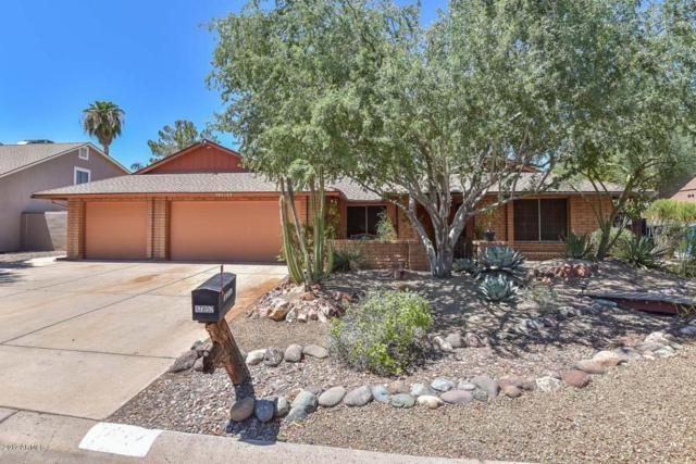 17852 N 44TH Avenue, Glendale, AZ 85308 (MLS #5648463) :: The Laughton Team