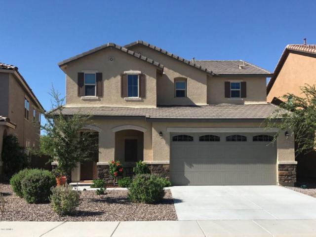 11911 W Desert Moon Court, Peoria, AZ 85383 (MLS #5648468) :: The Laughton Team