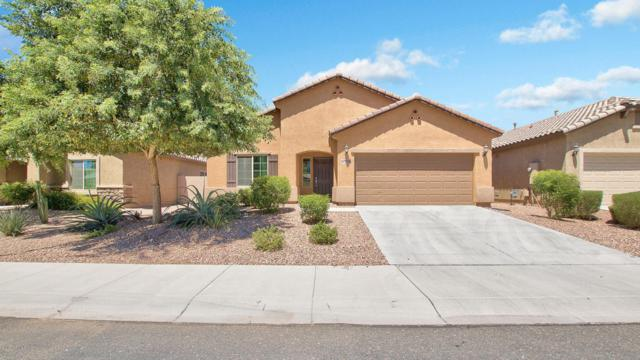 10776 W Yearling Road, Peoria, AZ 85383 (MLS #5648471) :: Desert Home Premier