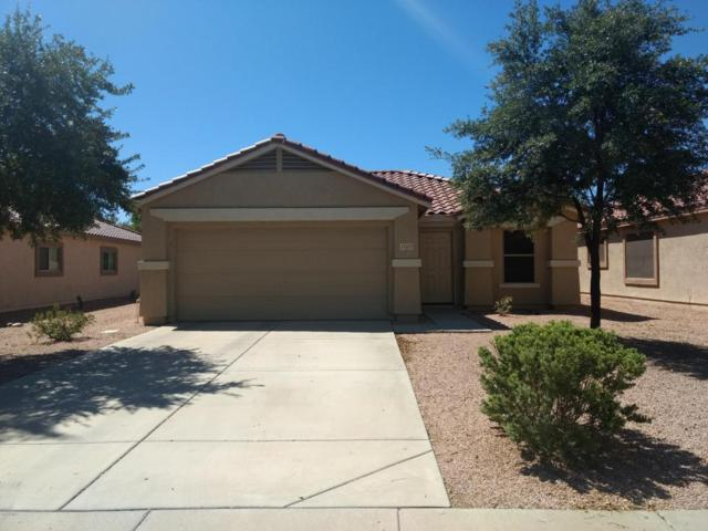 15421 W Cameron Drive, Surprise, AZ 85379 (MLS #5648500) :: Desert Home Premier
