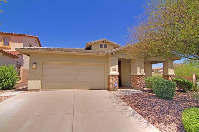 29605 N 126TH Drive, Peoria, AZ 85383 (MLS #5648514) :: Desert Home Premier