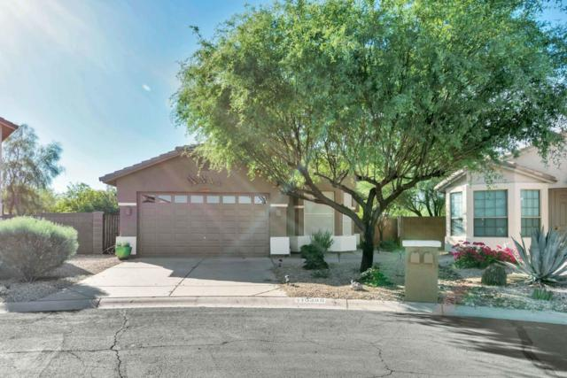 10399 E Nice Court, Gold Canyon, AZ 85118 (MLS #5648517) :: The Bill and Cindy Flowers Team