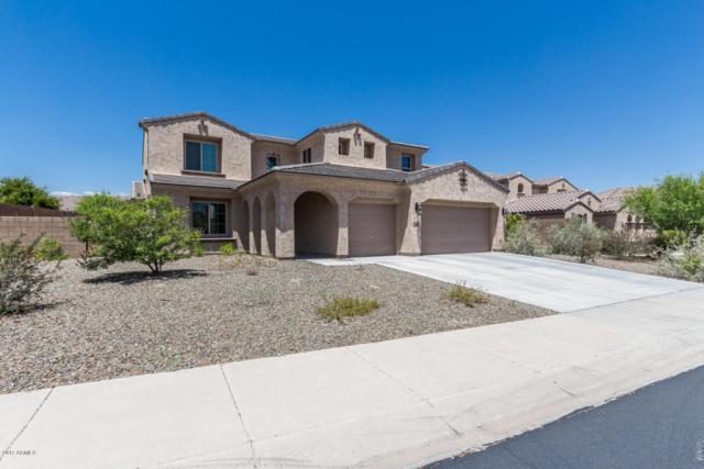 13322 W Jesse Red Drive, Peoria, AZ 85383 (MLS #5648526) :: The Laughton Team