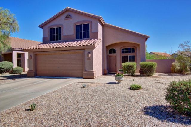 4628 E Matt Dillon Trail, Cave Creek, AZ 85331 (MLS #5648567) :: 10X Homes