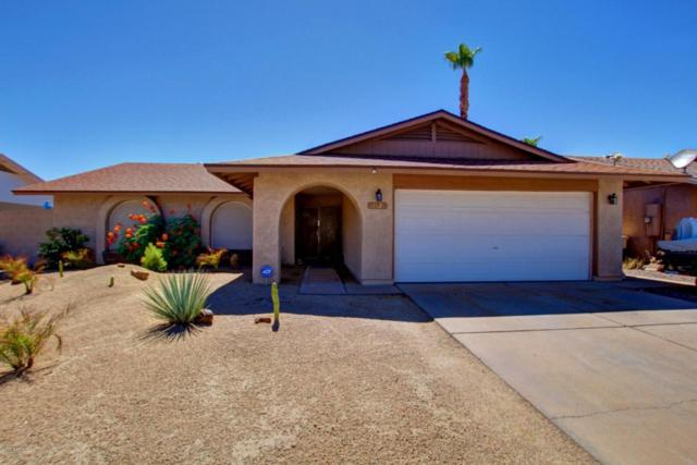 17824 N 57TH Drive, Glendale, AZ 85308 (MLS #5648601) :: The Laughton Team