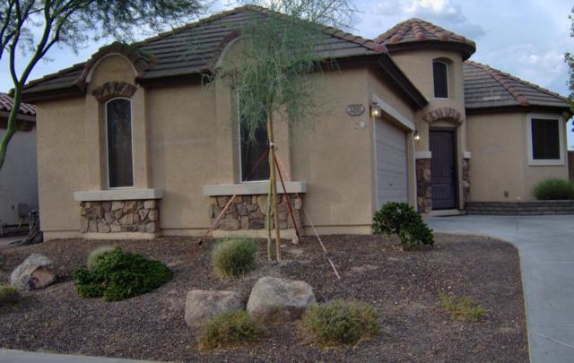3201 N 302ND Court, Buckeye, AZ 85396 (MLS #5648617) :: 10X Homes