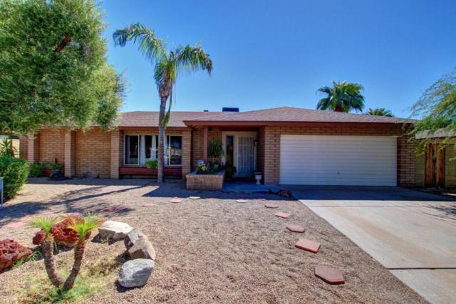 8315 N 51st Drive, Glendale, AZ 85302 (MLS #5648660) :: The Laughton Team