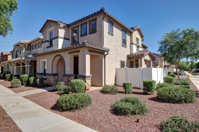 1333 S Joshua Tree Lane, Gilbert, AZ 85296 (MLS #5648674) :: The Laughton Team
