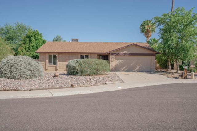 6109 E Spring Road, Scottsdale, AZ 85254 (MLS #5648675) :: The Laughton Team