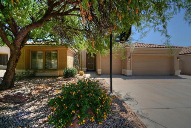 22639 N 41ST Street, Phoenix, AZ 85050 (MLS #5648677) :: The Laughton Team